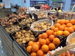 EcoLogical: Distribución Productos Ecólogicos