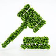 (Español) Informes periciales del sector ecológico